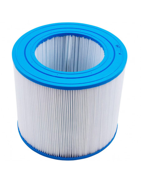 1 Cartouche R173213 pour filtre Clean and clear / predator 50