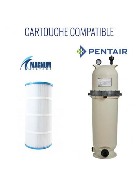 4 Filtre Pentair Clean and clear 200 / Posi Clear RP / predator 200